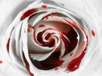 Процесс и причины маточного кровотечения