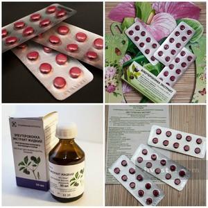 Фитопрепарат элеутерококк, полезные свойства и противопоказания