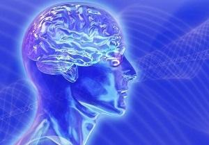 Гормоны гипофиза: функции и отклонения