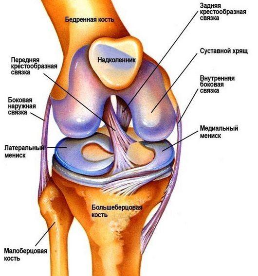 Болит колено при сгибании и разгибании