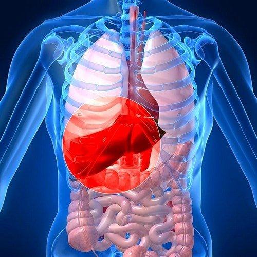 Причины возникновения горечи во рту