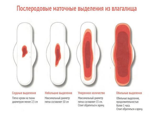 Как долго идут выделения после родов: восстановление и симптомы