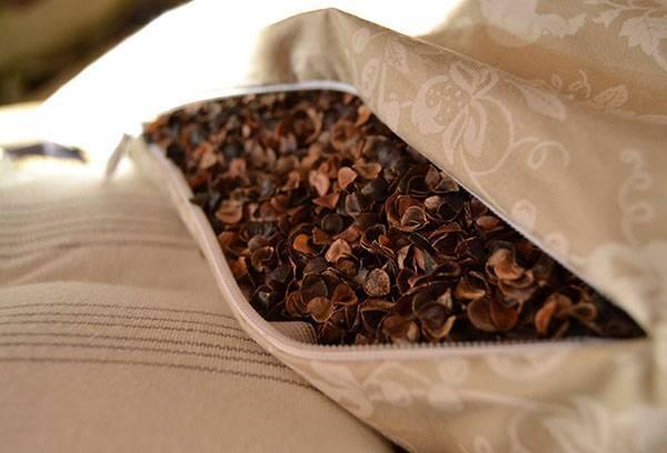 Польза и вред ортопедической подушки из гречневой лузги