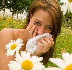 Аллергия в августе на что