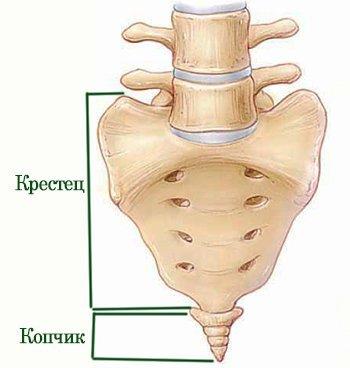 Причины и лечение ушиба копчика при падении: порядок действий