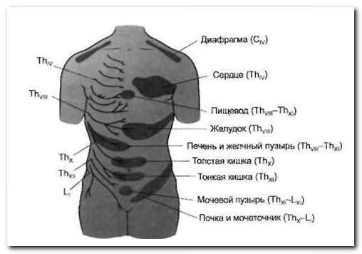 Боль в спине справа выше поясницы: возможные причины