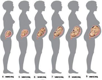 21 неделя беременности ощущения женщины и развитие плода
