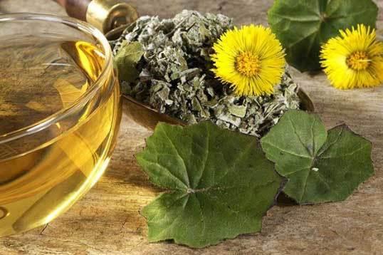 Кашель при аллергии, методы лечения и профилактики, народная медицина