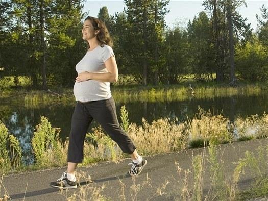 Исследование белка в моче при беременности