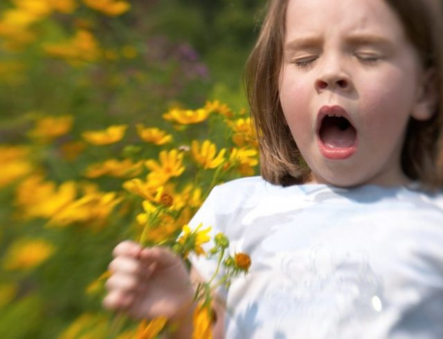 Особенности сезонной аллергии, причины, симптомы, способы лечения, меры профилактики