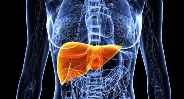 Питание при контактном дерматите: секреты скорейшего выздоровления